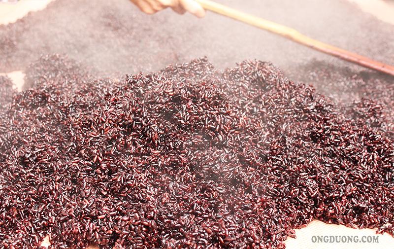 Gạo nếp cẩm có màu nâu đỏ chứa nhiều dưỡng chất