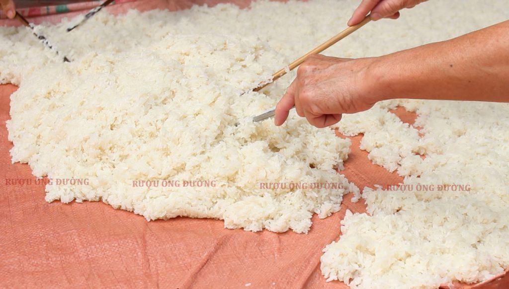 Nguyên liệu là những hạt gạo nếp trắng ngần vùng đồng bằng Bắc Bộ